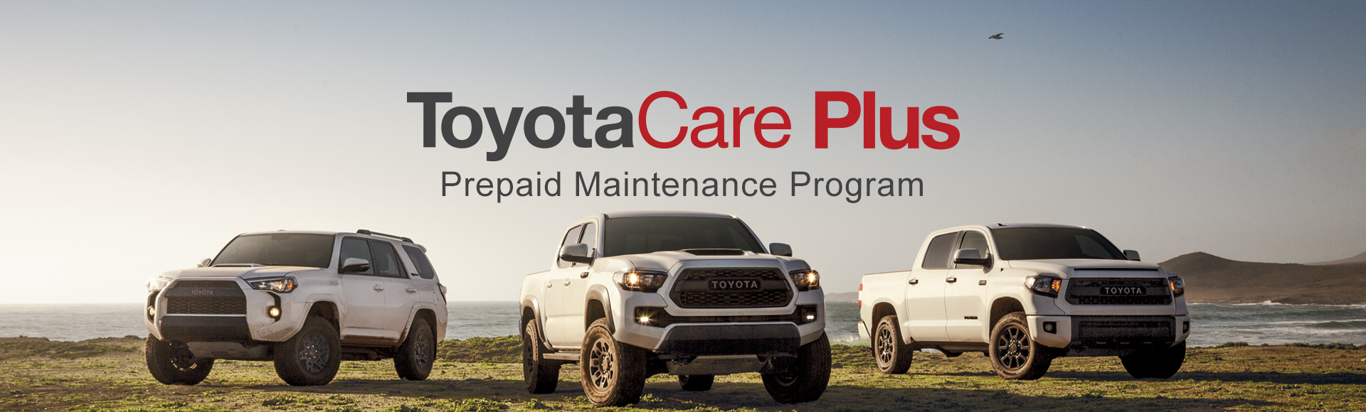 ToyotaCare Plus Prepaid Maintenance Program
