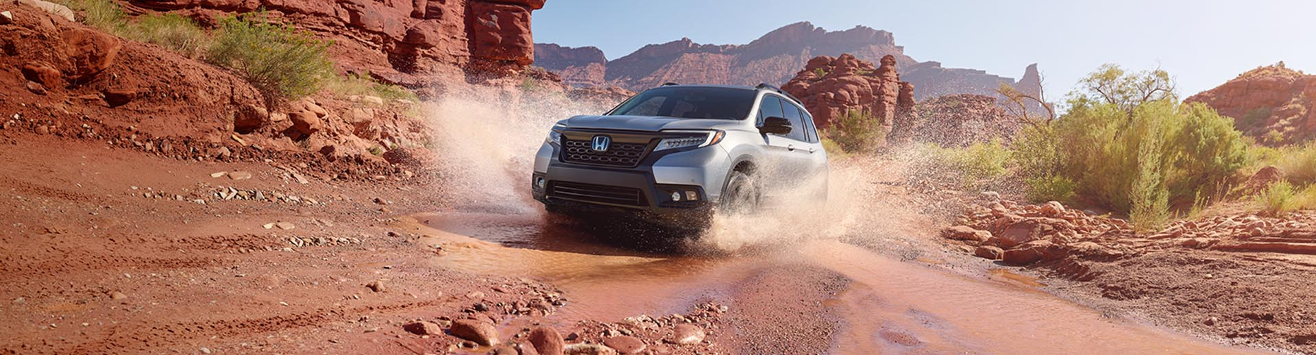 2020 Honda Passport Lifestyle Photo