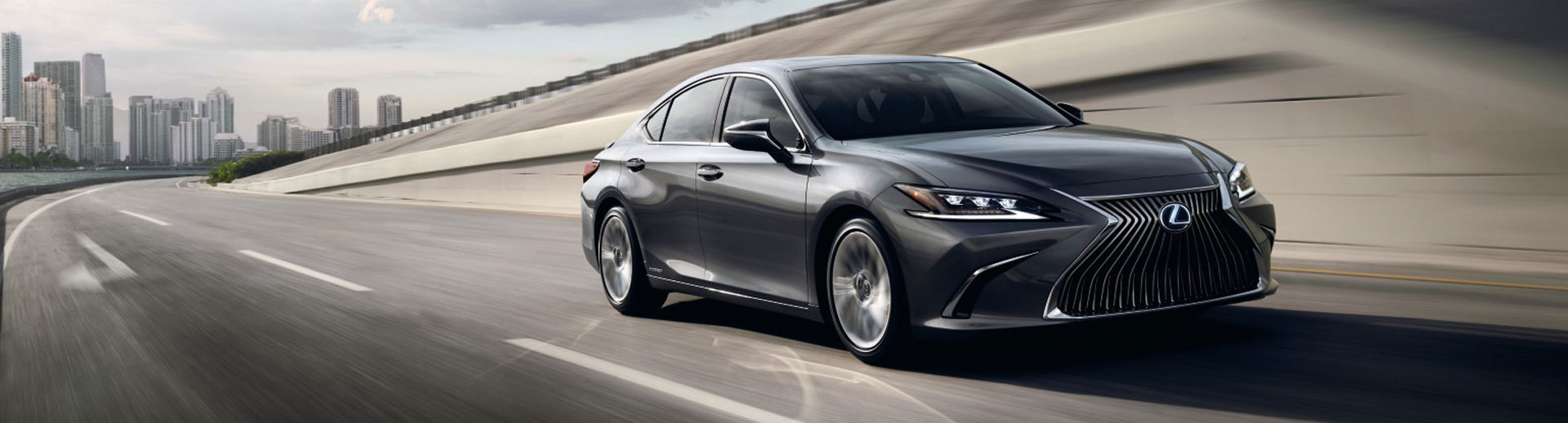 2021 Lexus ES 250 Lifestyle Photo