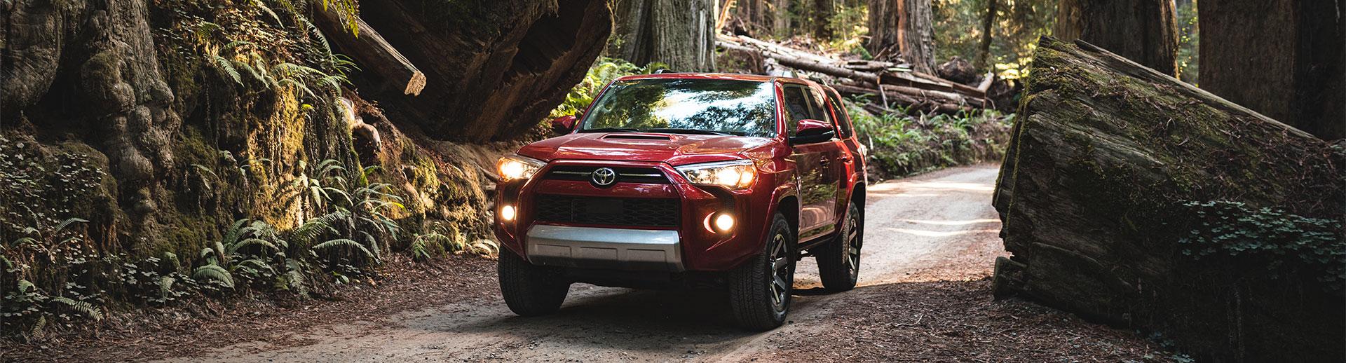 2020 Toyota 4Runner Lifestyle Photo